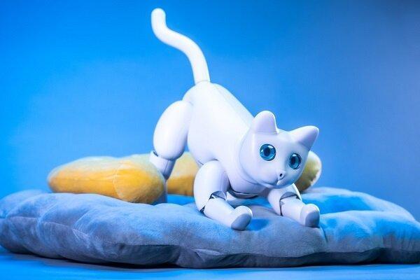 عرضه گربه های رباتیک با شخصیت های متفاوت
