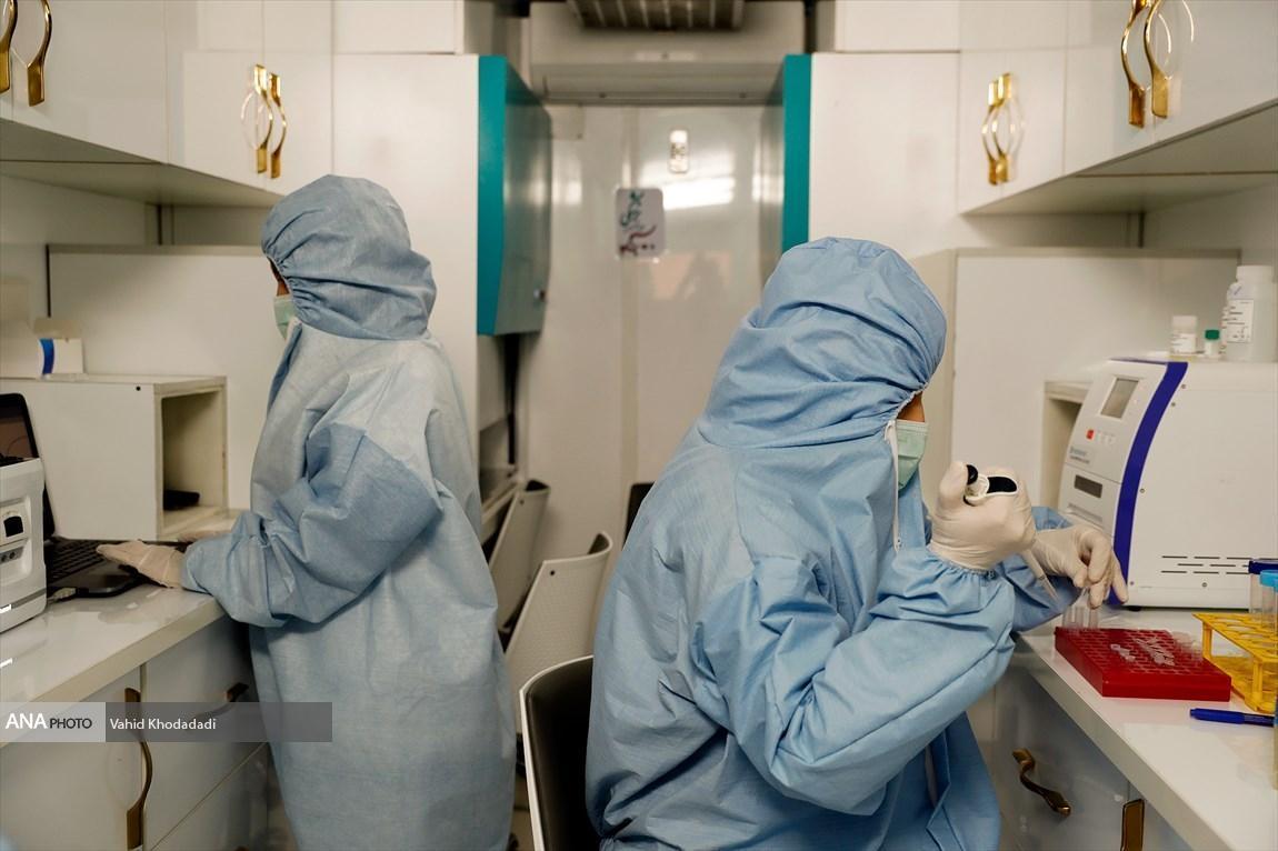 چند بیمار مبتلا به کرونا در استان بوشهر بهبود یافته اند؟