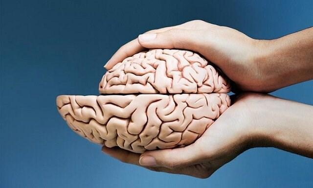 وقتی مغز کوچک می گردد!