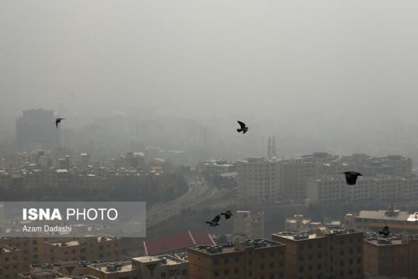 3 منبع بیشترین عامل آلودگی هوای کلانشهرها ، لزوم اجرای قانون هوای پاک بدون هیچ ملاحظه