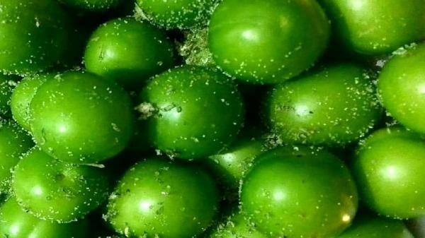 قیمت 10 میوه گران در میادین میوه و تره بار تهران
